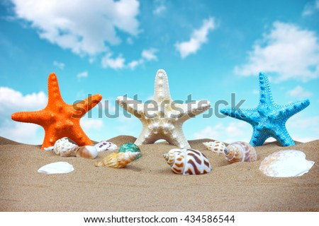 Summer background with starfish and accessories on sand beach