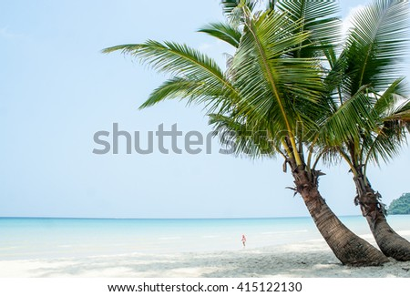 Summer beach - palm tree ,white sand, sea water in kohkood Island, Thailand