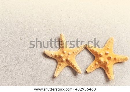 Summer beach. Starfish and seashell on the sand. Top view.