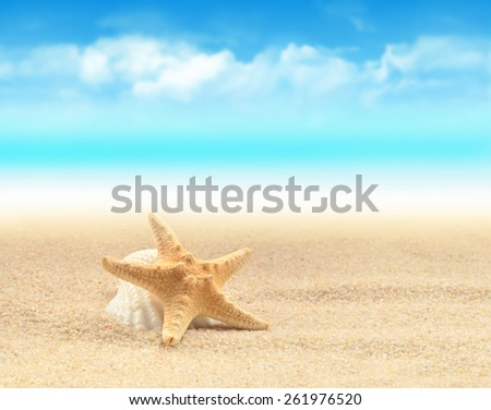 Summer beach. Starfish on the sand.  - stock photo