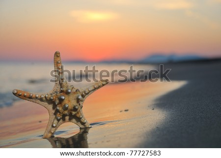 summer beach sunset with star on beach representing freedom freshnes and travel concept - stock photo