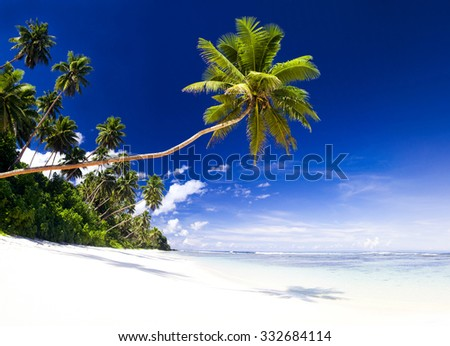 Summer Beach Tropical Paradise Seascape Concept - stock photo