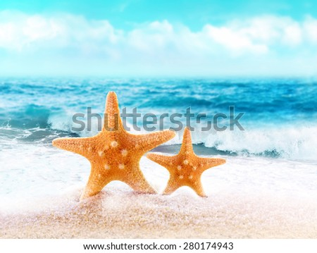 Summer beach. Two Starfish on the sand.
