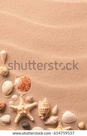 Summer beach vacation or holiday background with sand seashells and starfish.