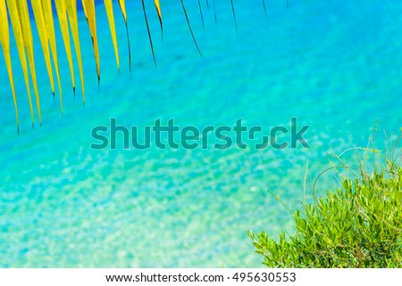Summer beach with yellow palm leaf and shiny sparkling sea water. Blurred background.