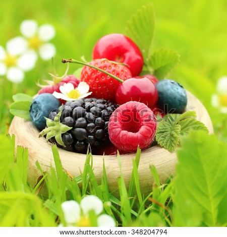 Summer berry fruits in green grass background.