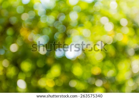 summer bokeh, beautiful bright background - stock photo