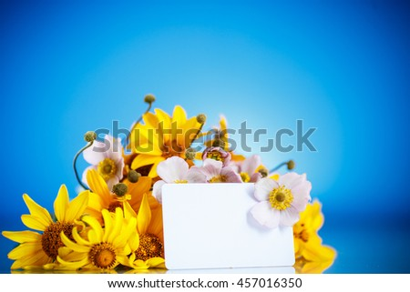 Summer bouquet of yellow daisies - stock photo