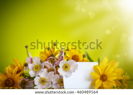 Summer bouquet of yellow daisies on an green background