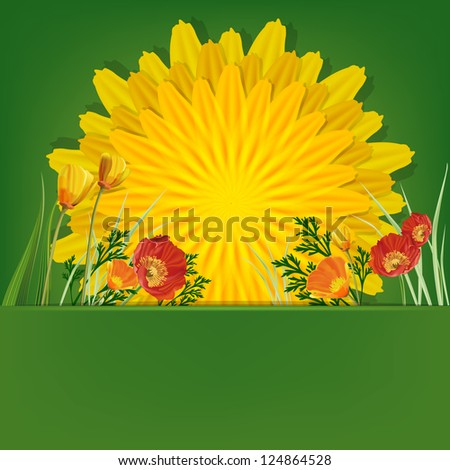 Summer bright background with dandelion and poppies. Raster copy of vector image