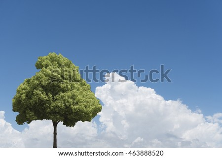 Summer cloud sky and tree, copy space on Right side