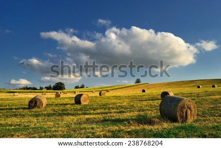 Summer cloudy meadow with hay bales - stock photo