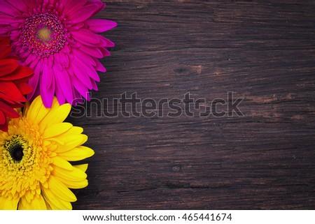 Summer colorful flowers on vintage wooden background.