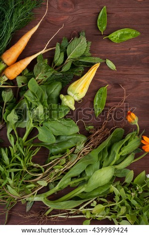 Summer composition with green grass and yellow flowers. Basil, mint, fennel, squash flower calendula on a brown wooden background. Vegetarian concept. Farmer's Foods - stock photo
