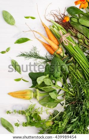Summer composition with green grass and yellow flowers. Basil, mint, fennel, squash flower calendula on a white wooden background. Vegetarian concept. Farmer's Foods - stock photo