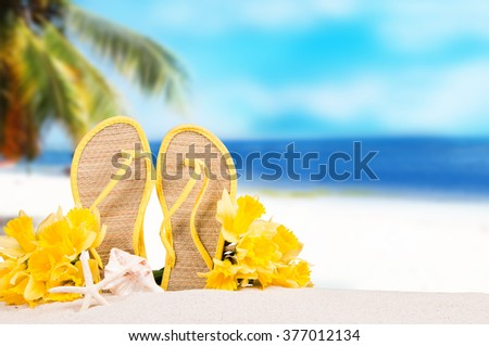 Summer concept of sandy beach, flip flop, narcissus and starfish. - stock photo