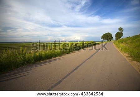 Summer countryside road
