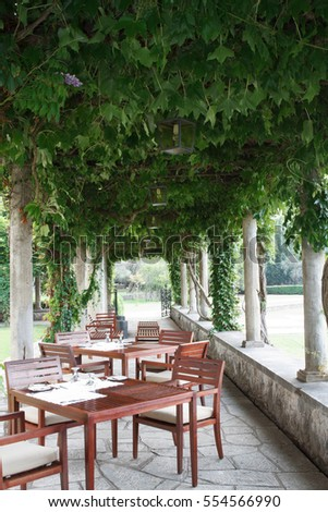 Summer cozy outdoor cafes and vineyards. Montenegro