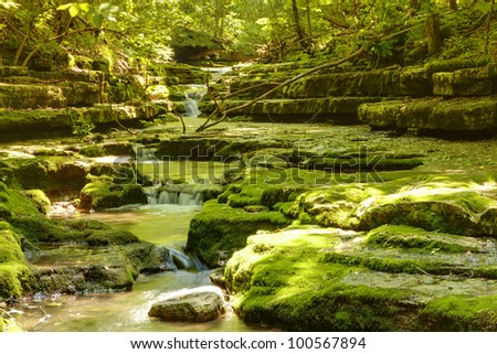 Summer creek in the forest - stock photo