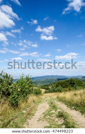 Summer day, path in perspective, mountain wood, blue sky with clouds