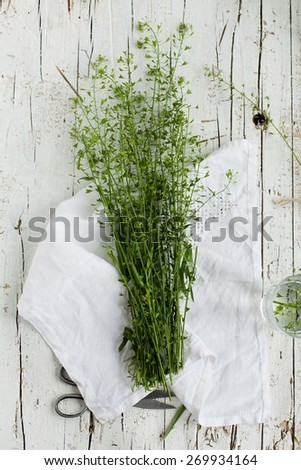 Summer day with wild grass. Top view. - stock photo