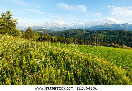 Summer evening mountain village outskirts with blossoming field and Tatra range behind(Gliczarow Gorny, Poland)