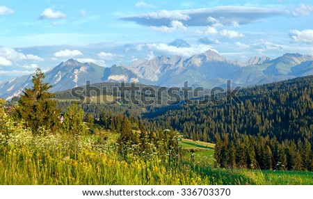 Summer evening mountain village outskirts with blossoming field and Tatra range behind (Gliczarow Gorny, Poland) - stock photo