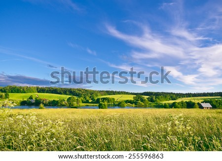 Summer evening. Muranovo hills, Moscow region, Russia