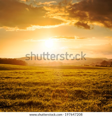 Summer Field and Clouds in Golden Light of Beautiful Sunset. Picturesque Landscape in Warm Colors. Copy Space. - stock photo