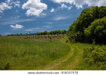 Summer field with road and clouds in blue sky. Beautiful summer field at sunny day