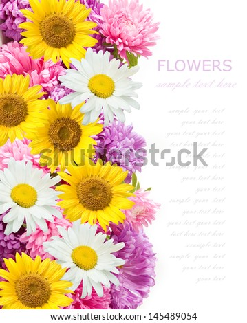 Summer flowers background with sunflowers isolated on white with sample text - stock photo