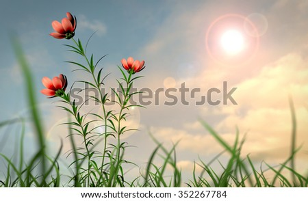 Summer flowers in the wind with shallow DOF - stock photo