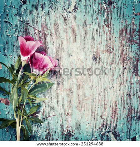 Summer flowers on vintage wooden background - stock photo