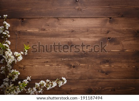 Summer Flowers on wood texture background with copyspace - stock photo