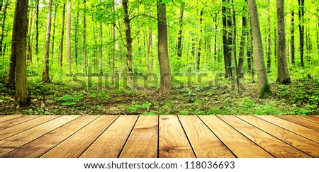 summer forest with wood planks floor