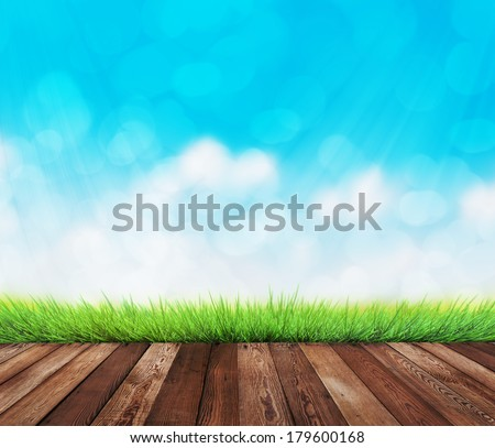 summer garden background - stock photo