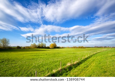 summer grassland and blue sky in sunny day, Holland - stock photo