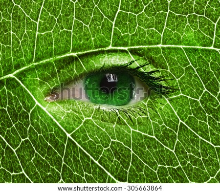 Summer Green eye close up and leaf texture on face. Ecology concept  - stock photo
