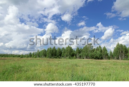 Summer green field under the blue sky with beautiful clouds on the forest background.