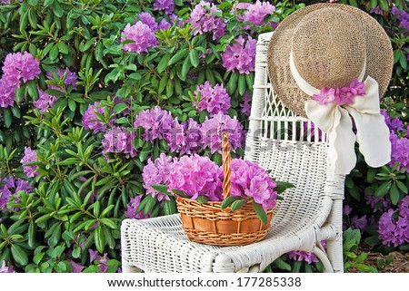 summer hat on chair with azaleas in garden - stock photo