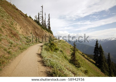 Summer hiking trail in the alpine mountain.