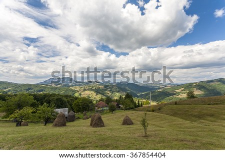 Summer in carpatians mountains Romania