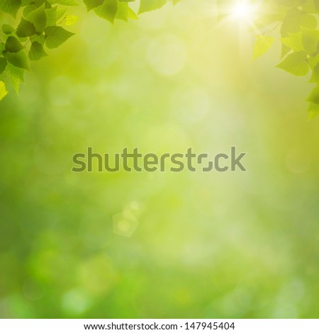Summer in the forest, abstract natural backgrounds with fresh foliage and bokeh - stock photo