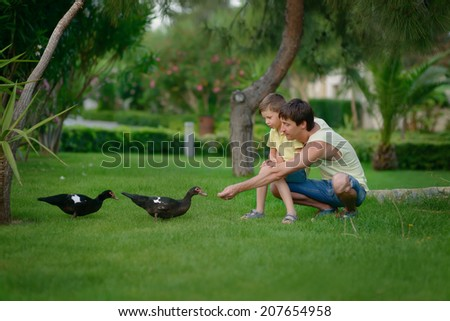 summer in the park on the green lawn son with his father feed wild ducks - stock photo
