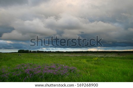 summer landscape clouds over green meadow before the storm - stock photo