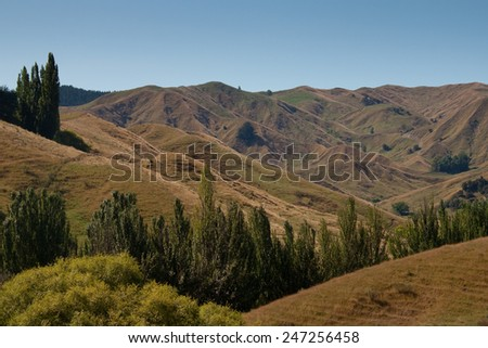 Summer landscape, drought conditions, North Island, New Zealand  - stock photo