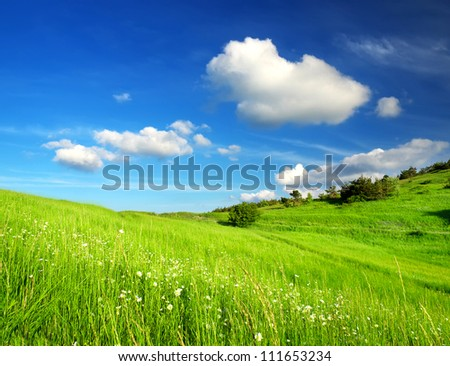 Summer landscape. Green field and clouds - stock photo