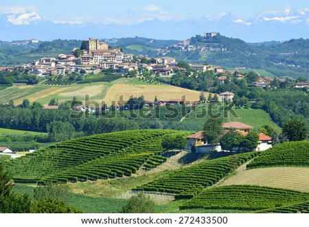 Summer landscape in Langhe (Piedmont, Italy), with vineyards, at Grinzane Cavour - stock photo