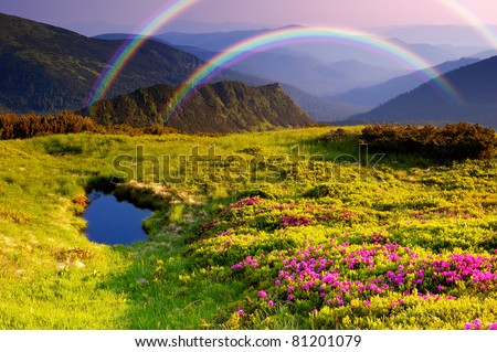 Summer landscape in mountains with Flowers, a rainbow and lake - stock photo