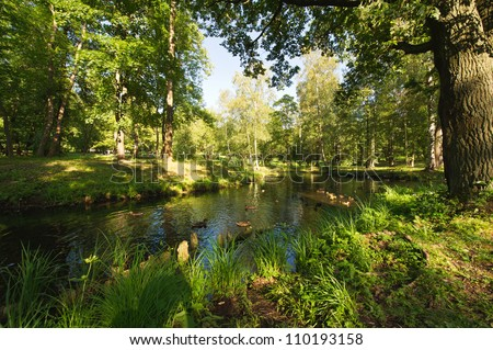 Summer landscape in the national park Gatchina. Russia - stock photo
